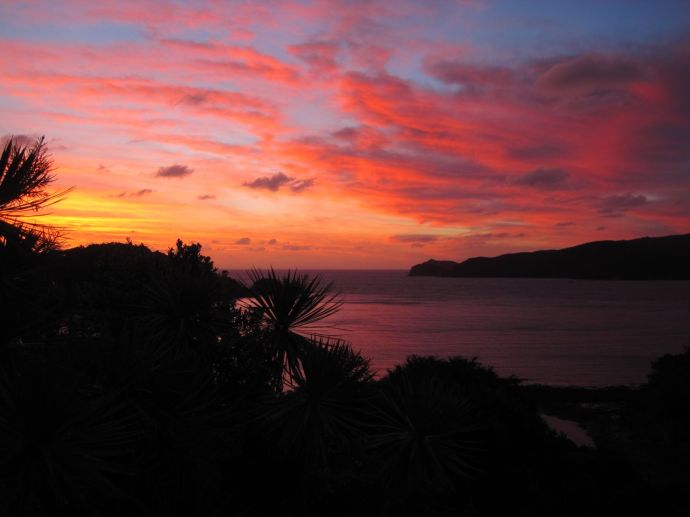 A stunning Great Barrier Island sunset