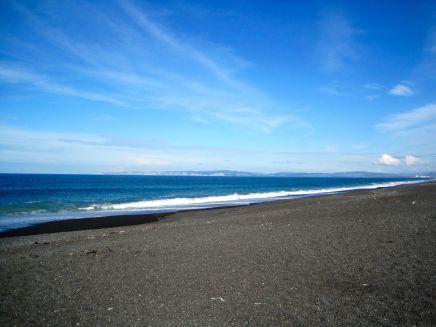 Napier's beach