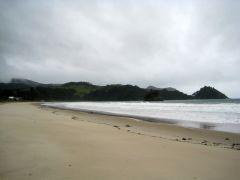 Whagapoua beach