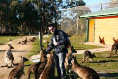 John feeding the kangaroos!