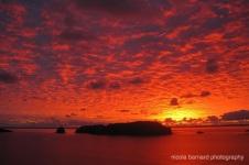 Hahei Sunrise