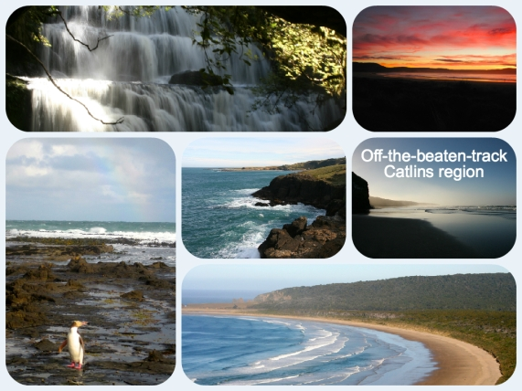 Catlins Collage
