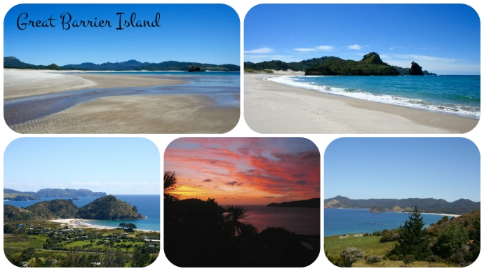 Great Barrier Island Collage.jpg